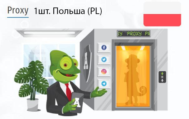 Купить Анонимный IPv4 прокси-сервер Польша (PL)