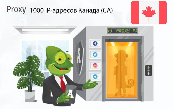 Стоимость 1000 пакетных прокси Канада (CA)