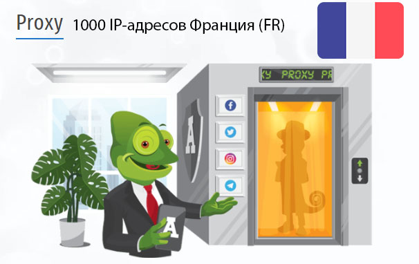 Стоимость 1000 пакетных прокси Франция (FR)