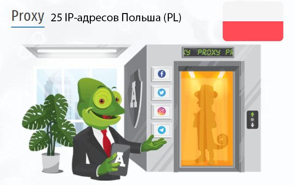 Стоимость 25 пакетных прокси Польша (PL)