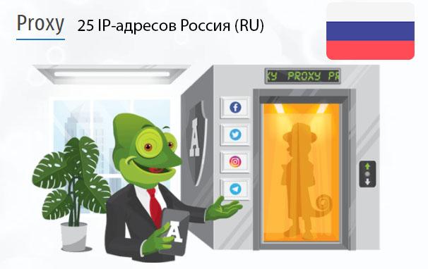 Стоимость 25 пакетных прокси Россия (RU)