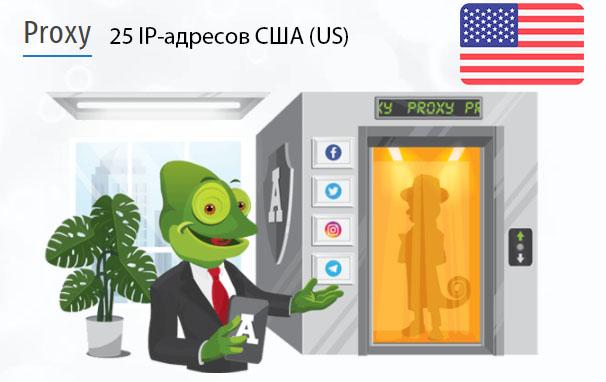 Стоимость 25 пакетных прокси США (US)